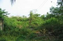 LA56100015-Land for sale 1 for 21.8 E.rn.y. Taling Point mall. Near the Southern Bus